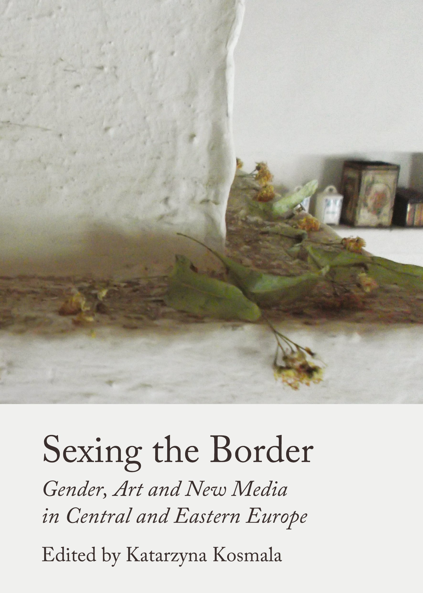 Sexing the Border: Gender, Art and New Media in Central and Eastern Europe