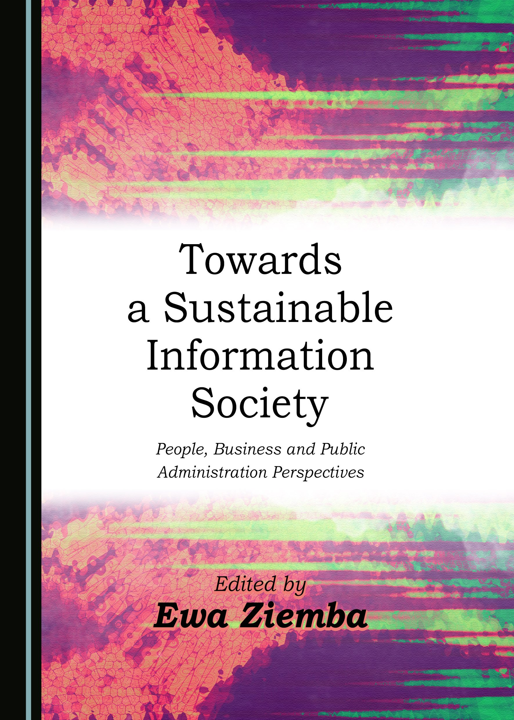 Towards a Sustainable Information Society: People, Business and Public Administration Perspectives