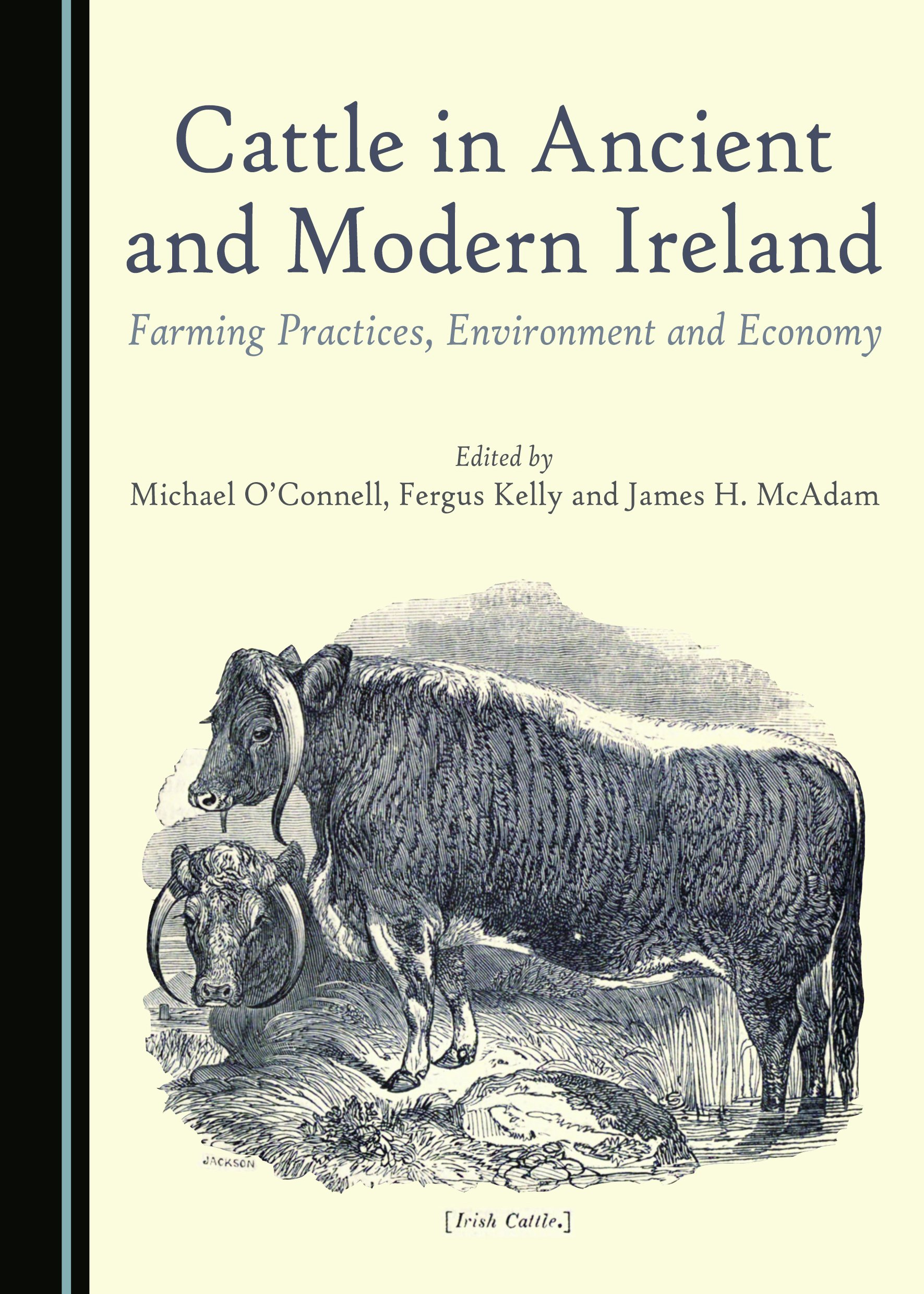 Cattle in Ancient and Modern Ireland: Farming Practices, Environment and Economy