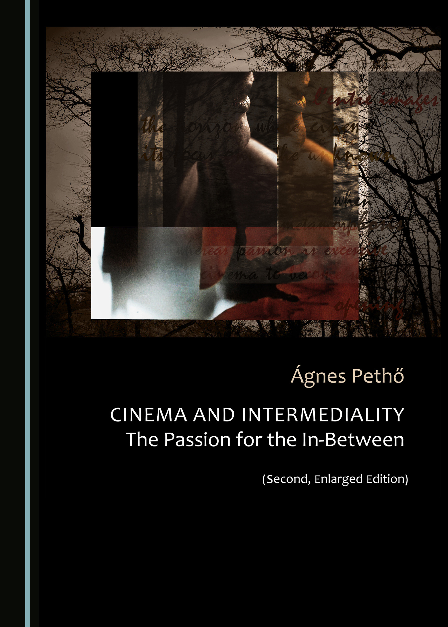 Cinema and Intermediality (Second, Enlarged Edition): The Passion for the In-Between