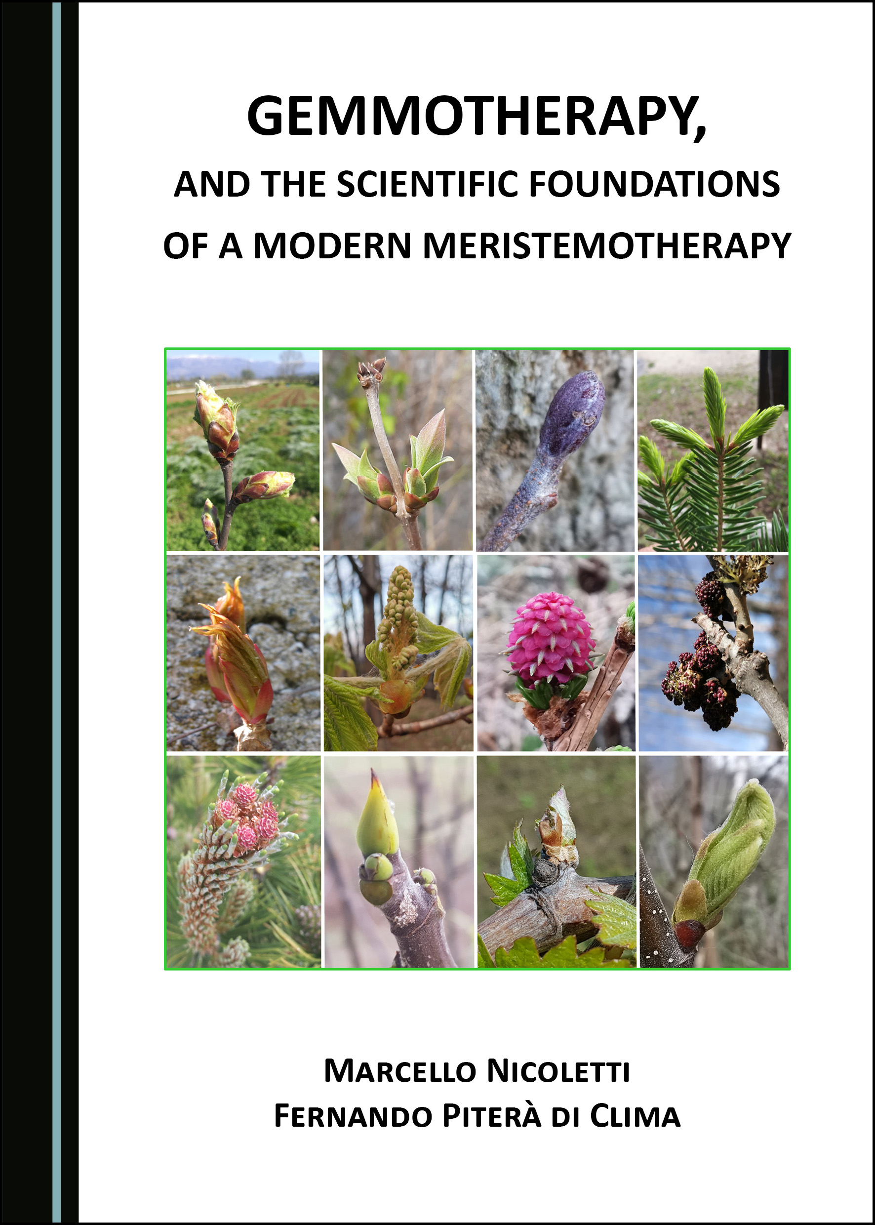 Gemmotherapy, and the Scientific Foundations of a Modern Meristemotherapy