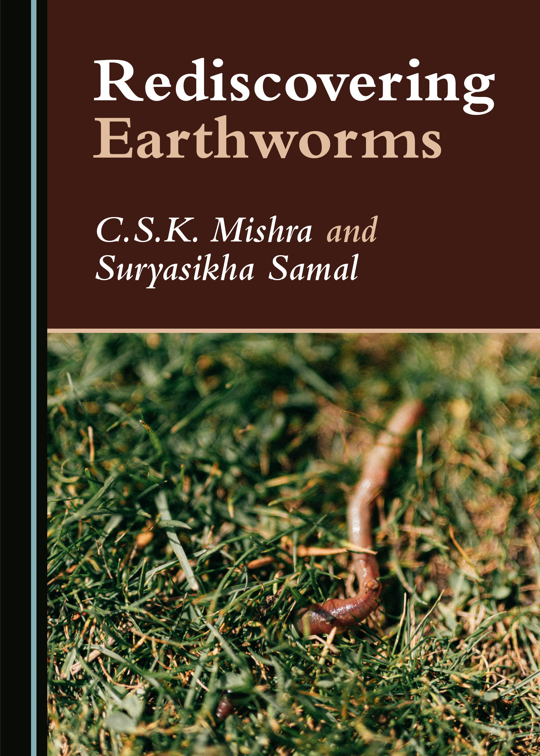 Rediscovering Earthworms