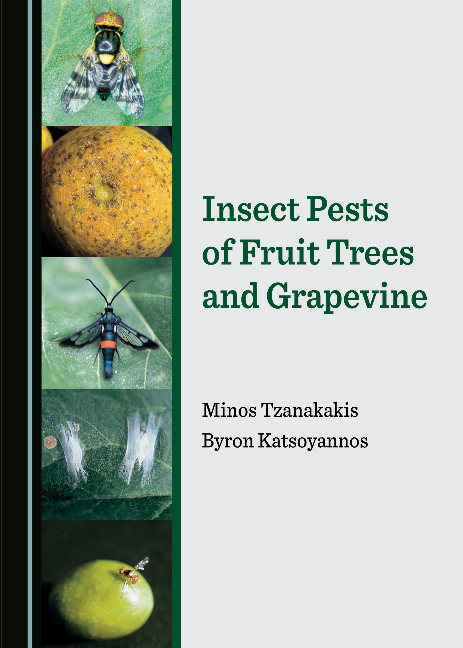 Insect Pests of Fruit Trees and Grapevine